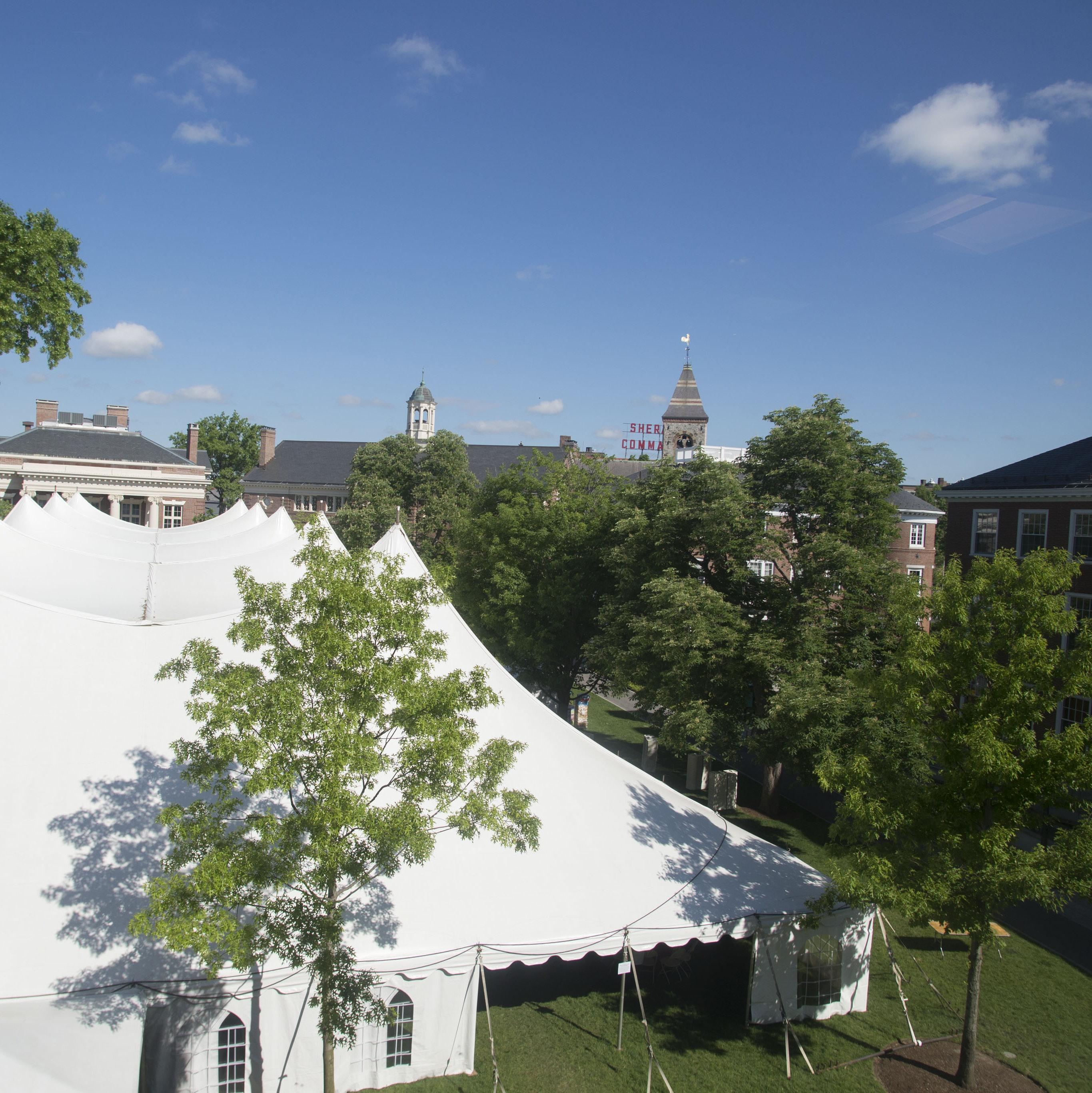 Dsc7411 Radcliffe Day Tent Tr