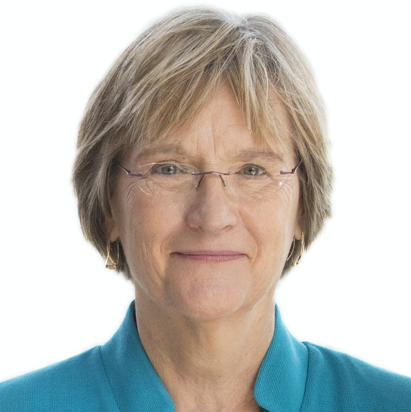 Headshot of Drew Gilpin Faust