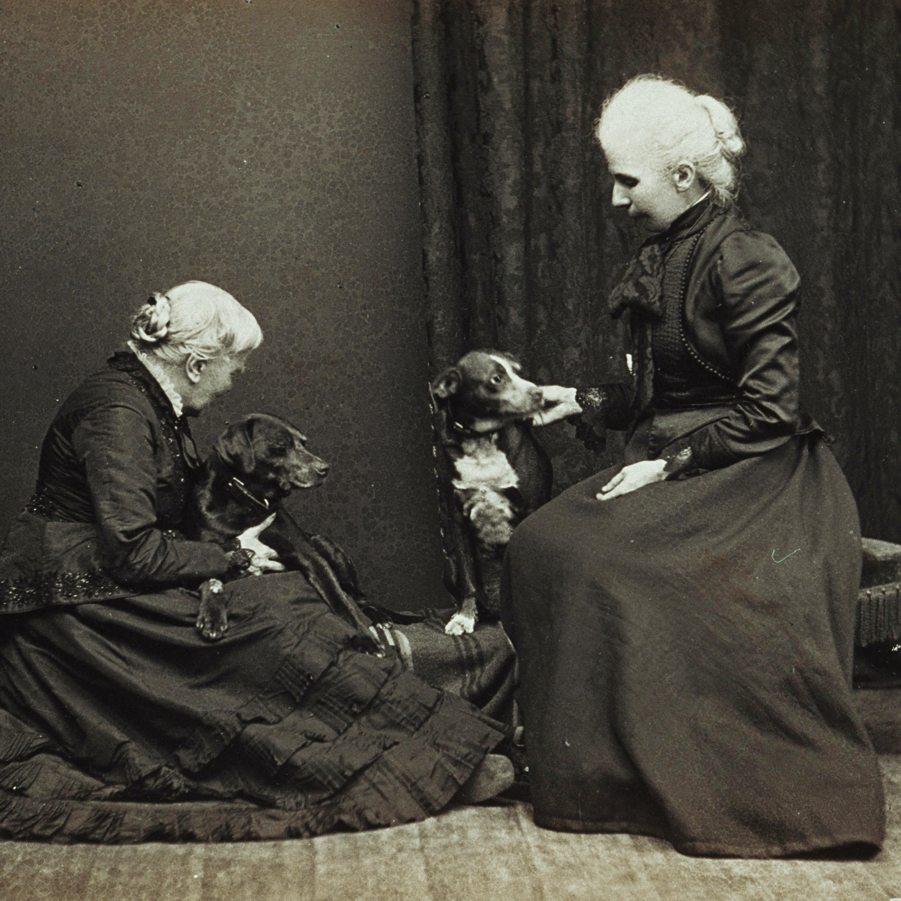 Elizabeth and Kitty Blackwell with dogs