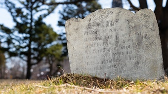"""Tombstone in Mt. Auburn Cemetery that reads, """"Here lyes ye body of Cecily, negro, late servant to ye Reverend Mr. William Brattle. She died April 8, 1714, being 13 years old."""""""