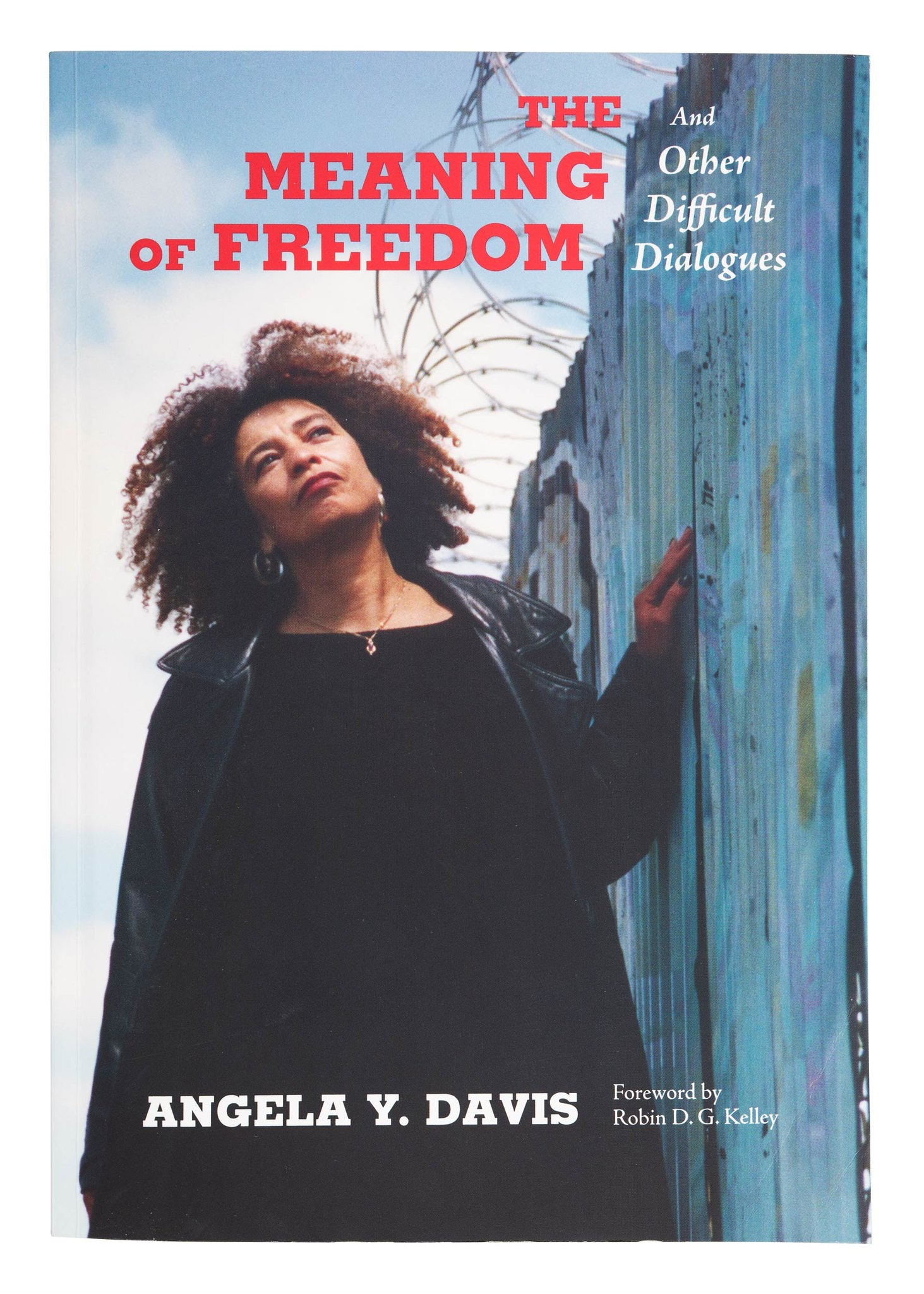 Angela Davis looking into the distance, with hand resting lightly on wall to her left.
