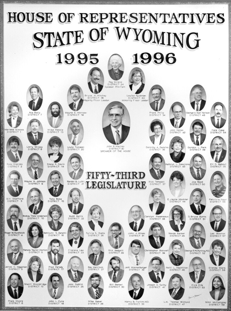 Poster of the House of Representatives for Wyoming of every district