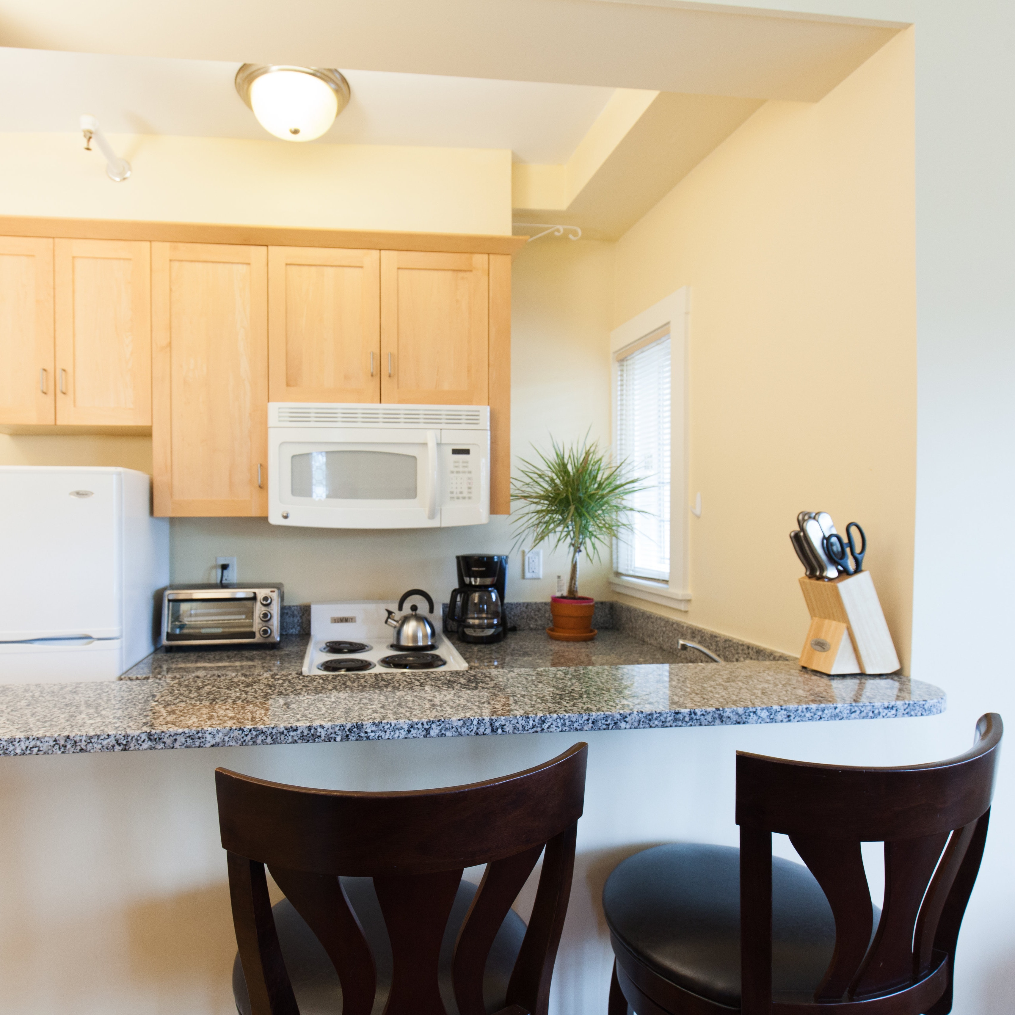 Kitchen area of 83 Brattle Street studio apartment with alcove