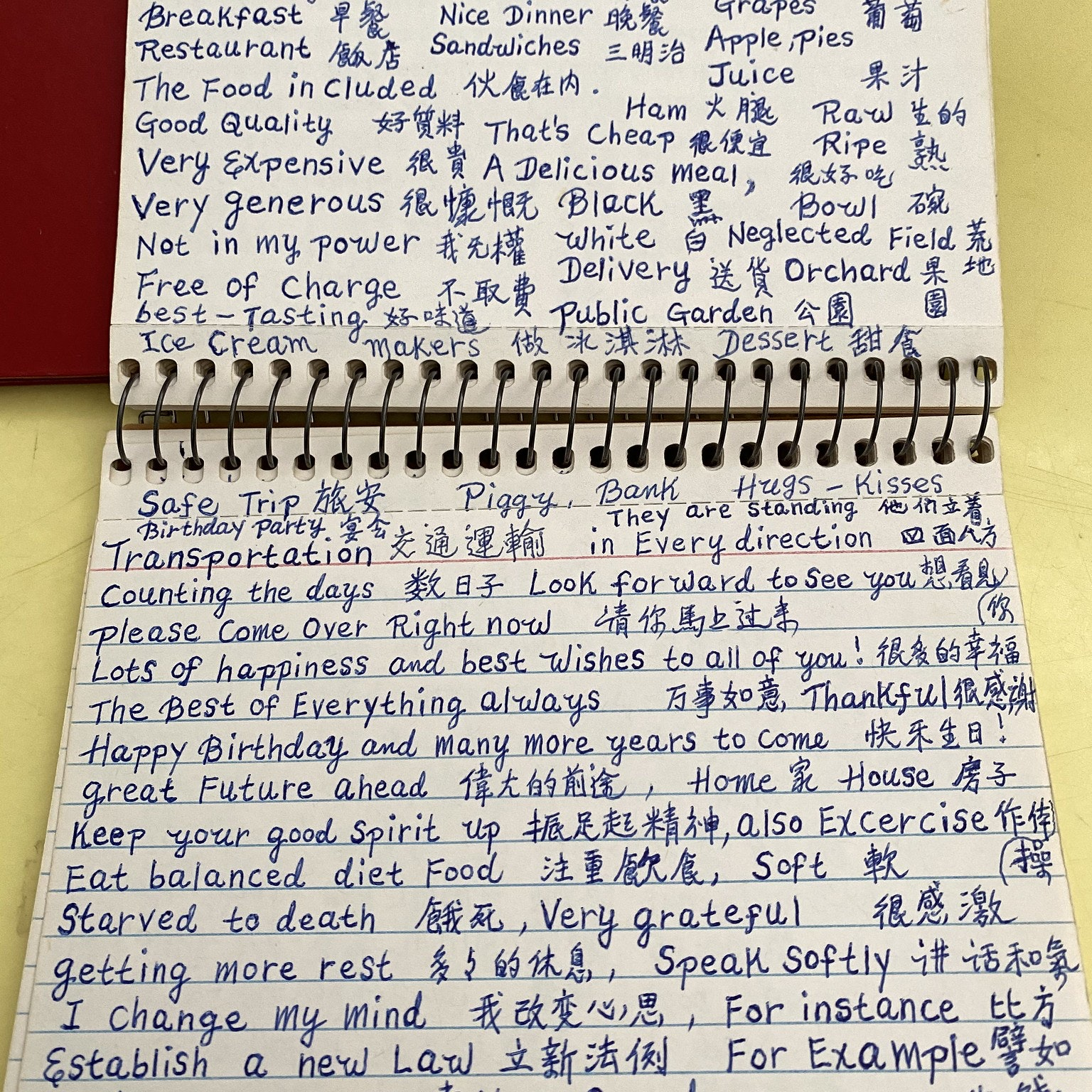 Notebook pages full of vocabulary words and phrases written in careful handwriting.