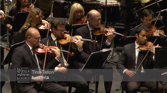 An orchestra's string section, mid-performance