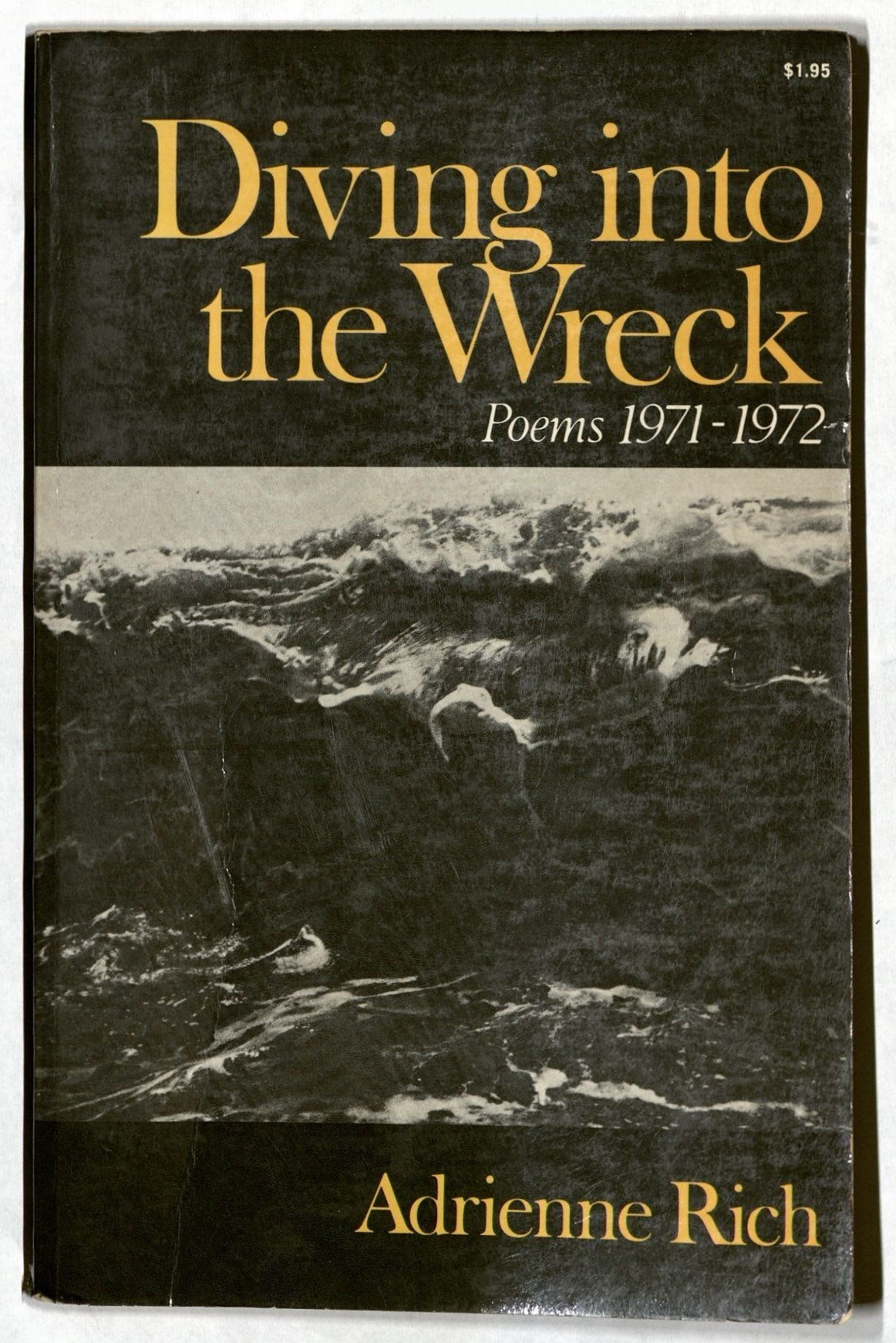 Book by Adrienne Rich